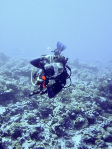 Melissa on the fore reef of Palmyra Atoll, 2008. Photo credit: Kydd Pollock.