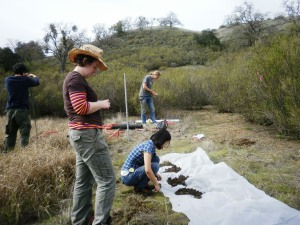 Sally (foreground) installing environmental monitoring sensors with undergraduate students at Blue Oak Ranch Reserve, California.